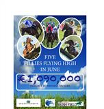 National Hunt Fillies Bonus Scheme Winners for June
