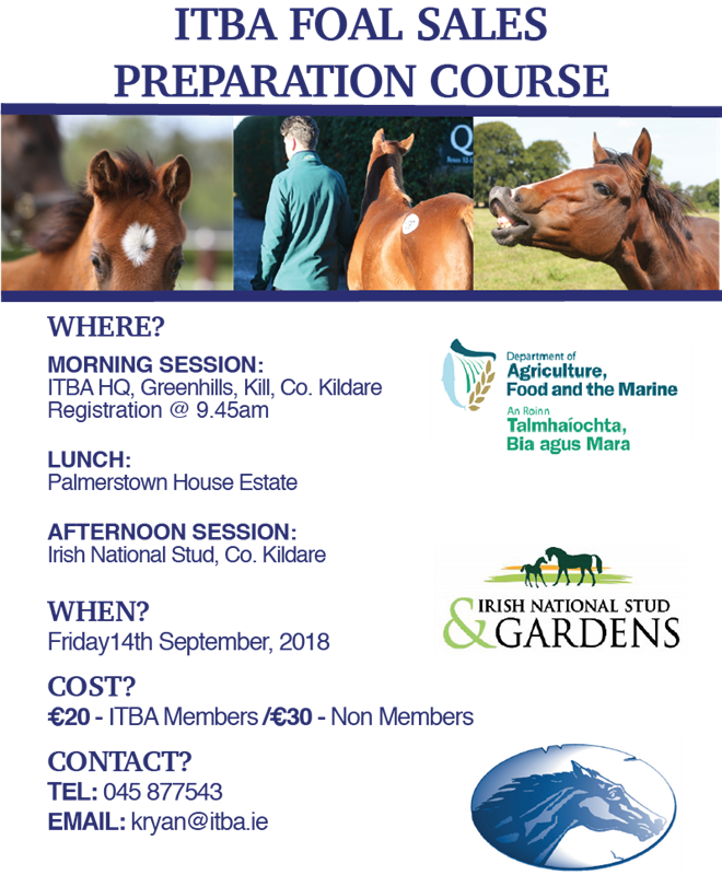 ITBA Foal Sale Preparation Course