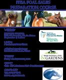 ITBA Foal Sale Preparation Course