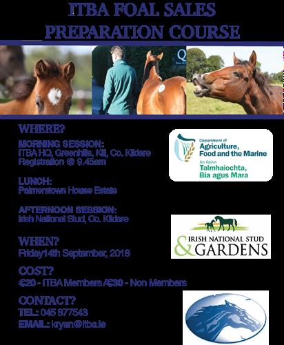 foal preperation workshop.png