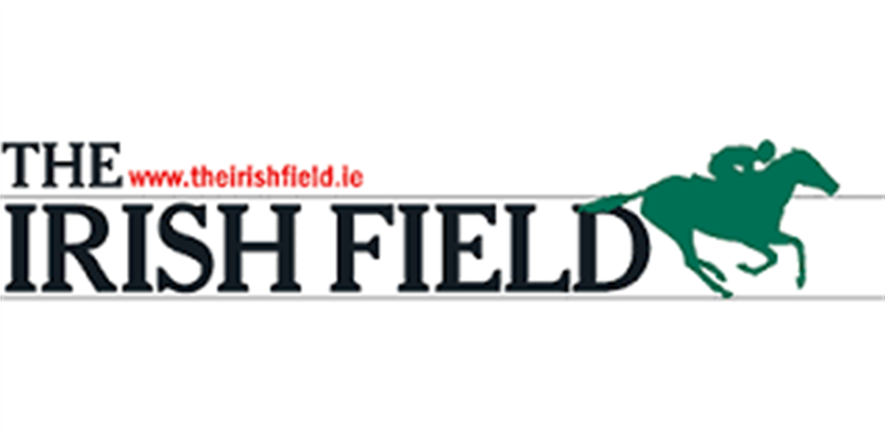 the irish field.png