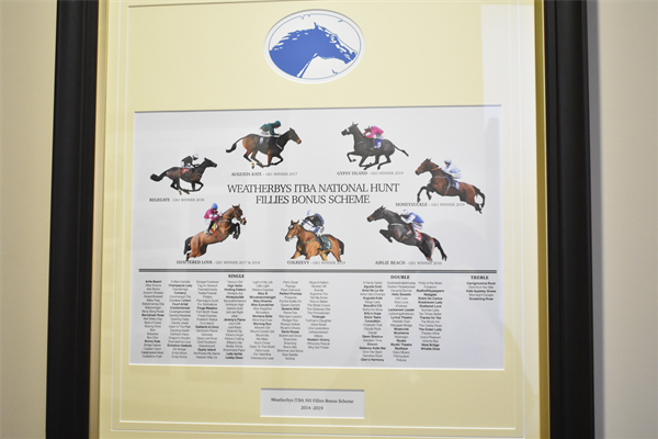 Weatherbys Ireland & ITBA National Hunt Fillies Bonus Scheme Winners from 2014 to 2019