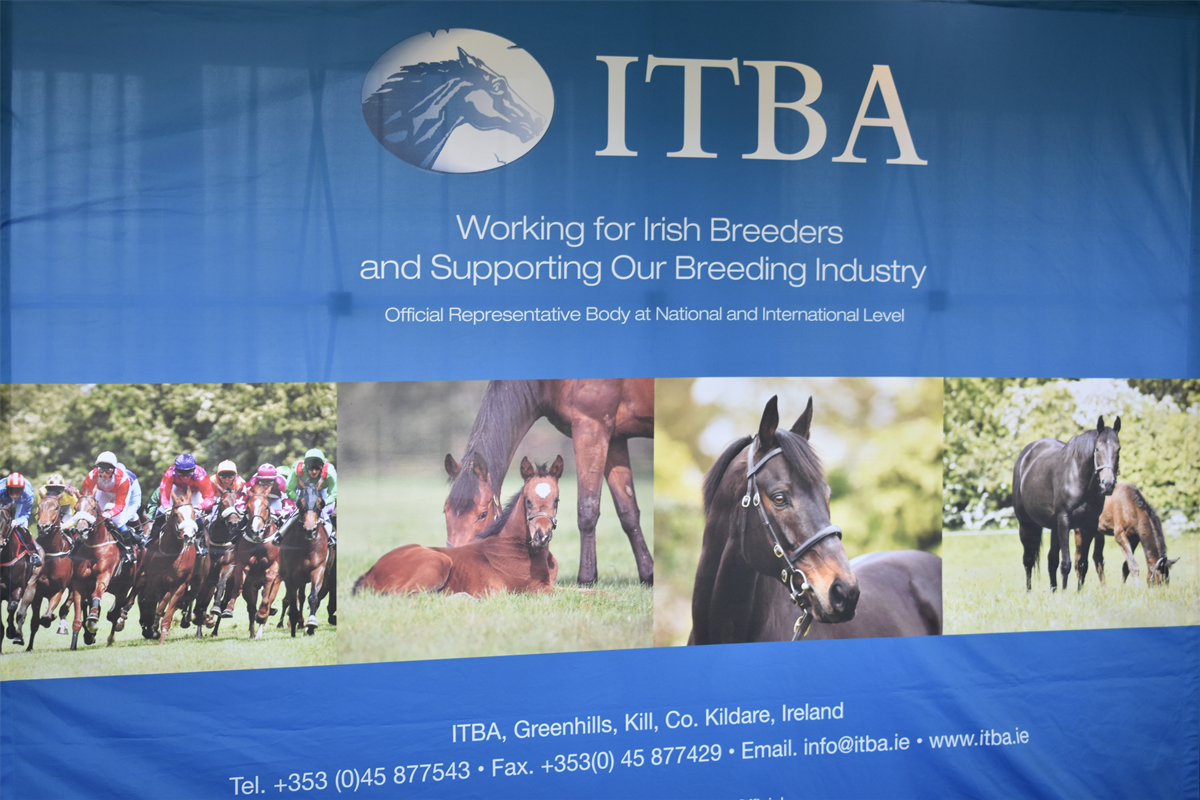 ITBA Summer Newsletter 2019