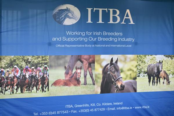 ITBA Summer Newsletter 2019