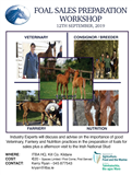 ITBA Foal Sales Preparation Workshop