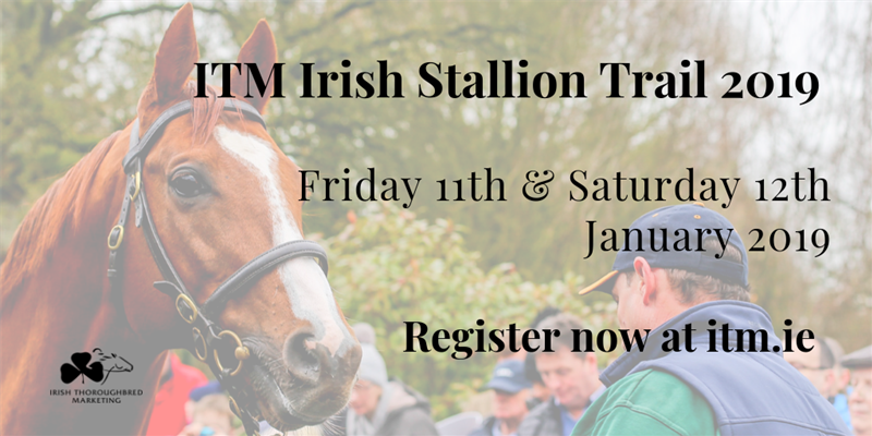 ITM Irish Stallion Trail 2019 - Twitter Promo.png