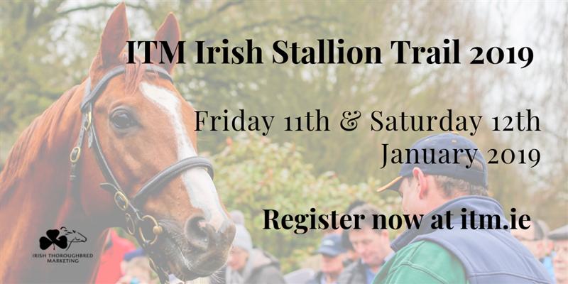 ITM Irish Stallion Trail 2019 - Twitter Promo.png