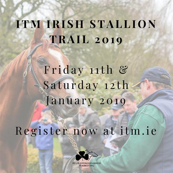 Irish Thoroughbred Marketing Stallion Trail