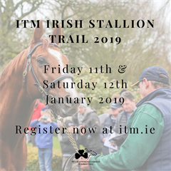 Irish Thoroughbred Marketing Stallion Trail