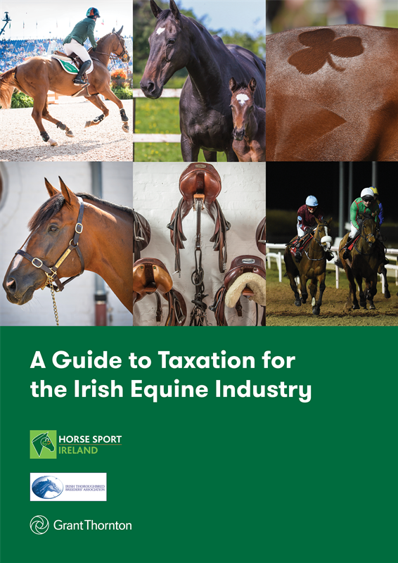 A Guide to Taxation for the Irish Equine Industry