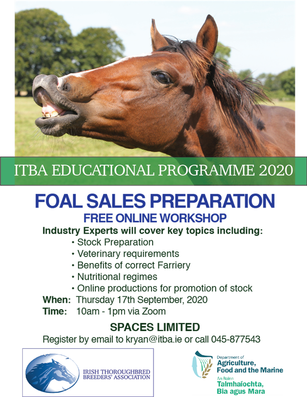 ITBA Foals Sales Preparation Workshop 2020 Moves Online