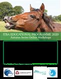 ITBA Autumn Series Workshop 2020