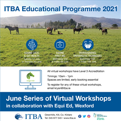 ITBA Educational Programme 2021 - SUMMER SERIES Launches
