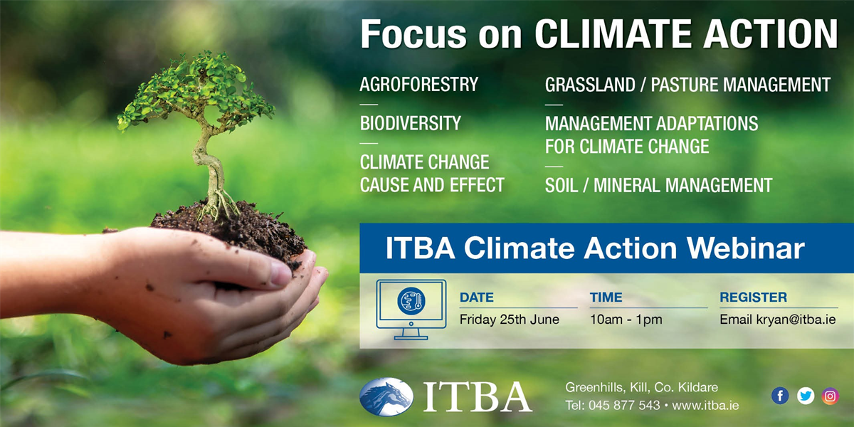ITBA Focus on CLIMATE ACTION Webinar Panel