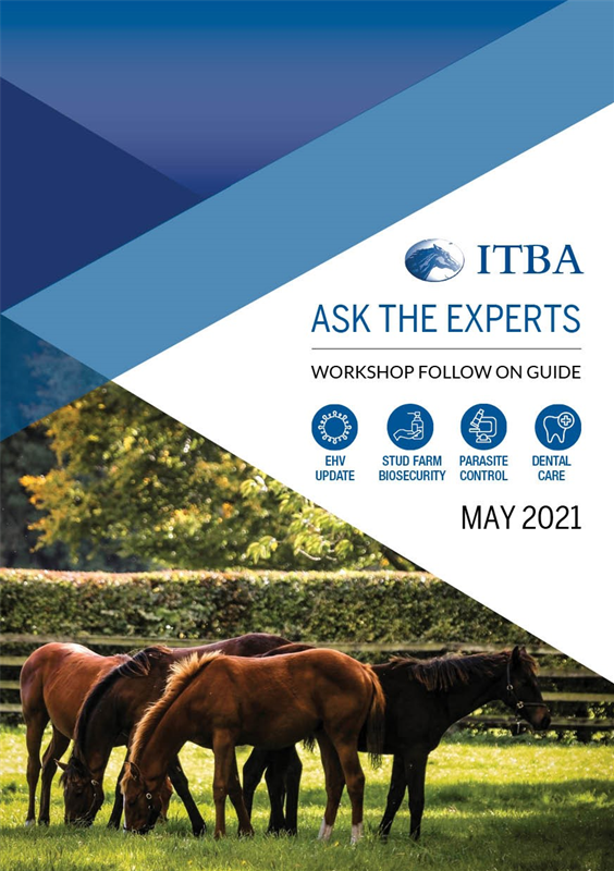 ITBA Educational Programme 2021 - Ask The Experts Series Follow on Guide