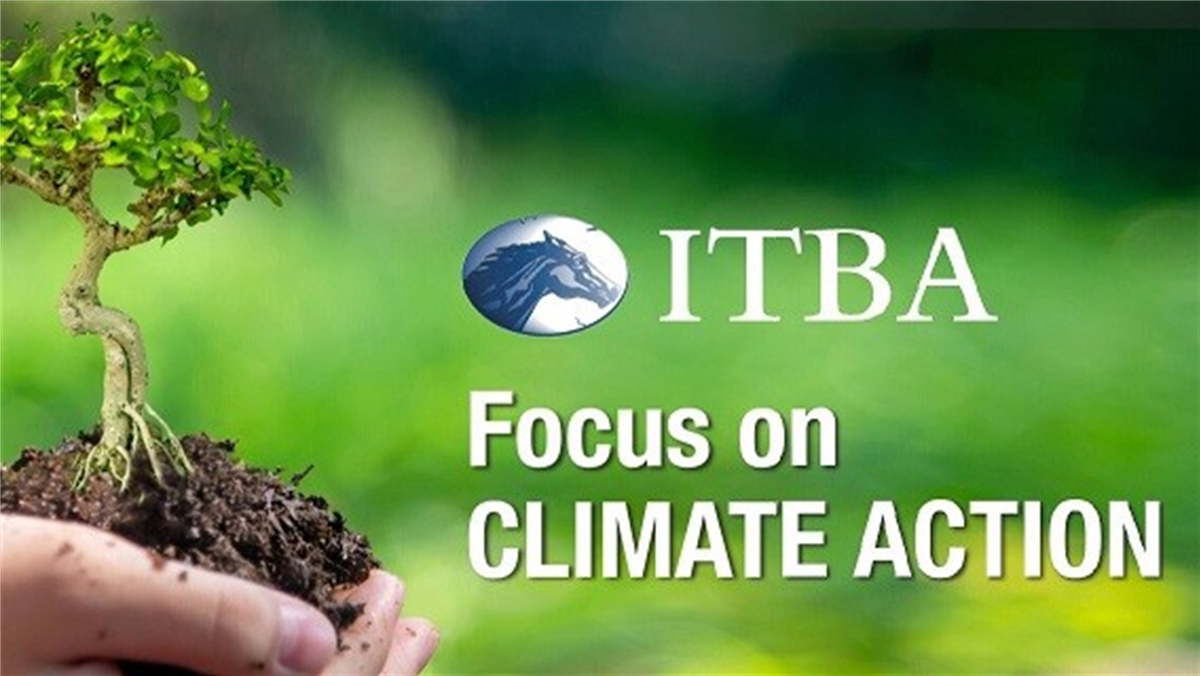 ITBA Focus on CLIMATE ACTION Webinar  - Follow On Guide