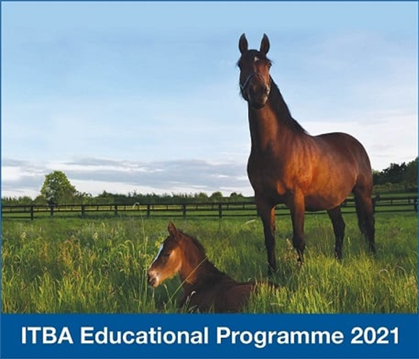 ITBA Educational Programme 2021 - Update
